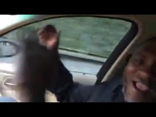 1аьржа(черный) НОХЧО!!!