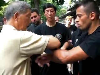 grand master of wing chun 2014 (The first bruce lee style)