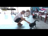 [RUS SUB] Mnet: BTS American Hustle Life Ep. 7 Unreleased Video - Jungkook getting ignored by the cat! Indeed, will Jimin and the cat become closer!