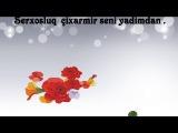 Намиг Алиев - Ayriliq 2014