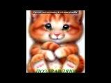 ДО ДНЯ НАРОДЖЕННЯ БРАТИКА!!!!!!! под музыку Flipsyde feat Piper=FaNя=Happy Birthday  - Втаю з Днем Народження! Бажаю тоб мцних снв, насичених днв  ночей, Бажаю сяти як зор в ноч, Бажаю завжди бути на висот, Бажаю бути пяною вд кохання. Ну  звичайно, цнувати життя. Здйснення всх бажань!!!)). Picrolla