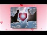 Acord love &amp Natali Song(remix Слава Сидоренко)