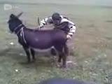 Пацан и Ишак