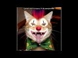 «С моей стены» под музыку Даб степ «Rob Zombie - Sick Bubblegum (квн вятка отбивка). Picrolla