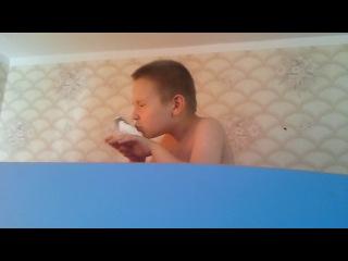 сын играет с попугаем