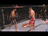 High kick KO by mma.vine