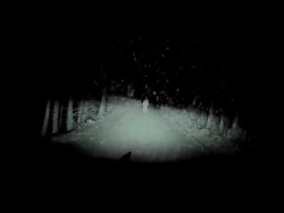 призрак на дороге(жуть)
