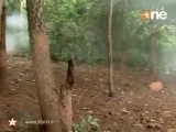 Pyaar Kii Ye Ek Kahaani -Ep 247