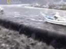 Свидетели японской катастрофы - 2011