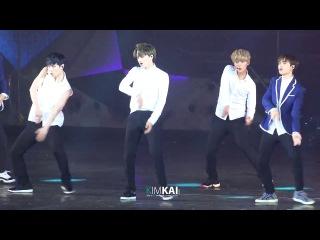 [FANCAM] 140823 싱가폴콘서트 - 으르렁(kai focus)