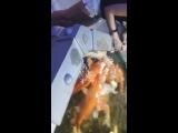 рыбки_планета_железяка