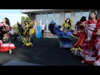 Наша свадьба!!! Цыганский танец... песня рады... спасибо шоу-балету ПАНТЕРА
