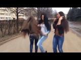девки танцуют