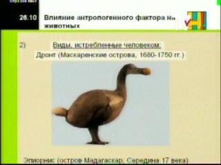 Биология 11 кл. Урок 26. Природоохранная деятельность человека