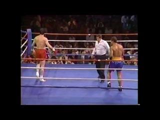Dennis Alexio vs Branko Cikatic