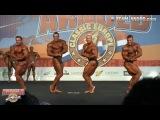 ACE Amateur 2014 Men's Bodybuilding up to 95kg, 100kg & over 100kg