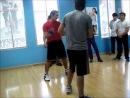 Sifu Cemil Uylukcu proWES Chile Seminar