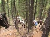 Спуск к озеру Кучерлинскому. Фрагмент из фильма