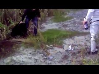 Пьяные живодеры забили медвежонка под Ханты-Мансийском. ХМАО