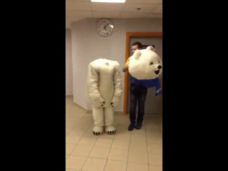 White bear without head