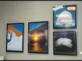 Выставка фотографа Ольги Каменской 14-07-14