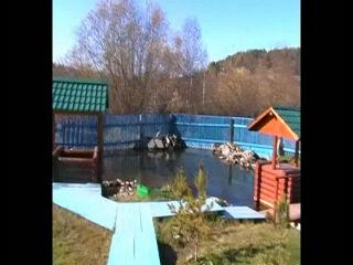 Www.odnoklassniki.ru/video/17587309248