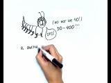 Art и факты. Числа http://vk.com/utronovoe