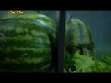 Повар-Мститель момент из сериала Кухня