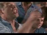 Paul Newman - 50 eggs