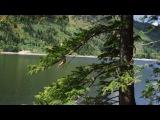 Прыжки в воду с тарзанки