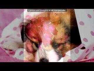 «С моей стены» под музыку Alexandra Deliu - Hot Right Now (In The Style of Rita Ora Dj Fresh). Picrolla