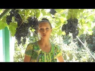 Семья Калмыковых 4 урок серии видео '5 ШАГОВ ЭФФЕКТИВНОГО ПЕРЕХОДА НА СЫРОЕДЕНИЕ'