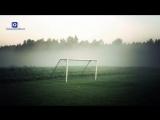 шейх Хасан Али - про футбольных болельщиков