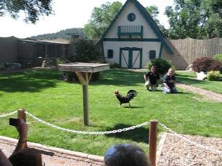 South Dakota Reptile Gardens 1