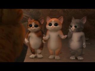 Кот в Сапогах (Что был в Шреке) - Надменное соревнование в милашенстве (Прикол) (Отрывок из короткометражного фильма) (Три котенка)