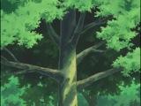 Naruto/Наруто 1 сезон 21 серія укр.озвучка від QTV