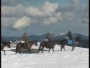 Мы вдвоем с конем по полю пойдем... Фрагмент из фильма Импрессионарный шок. Конно-водный маршрут.