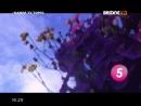 DANGE TV TOP-10_2014-12-