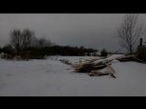 Дорога на страусиную ферму-2)