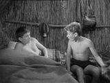 Терновая крепость / Tüskevár (7-я серия) (1967) (приключения, семейный)