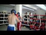 открытый ринг по кик-боксингу