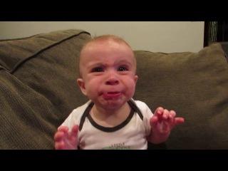Ребёнок впервые пробует лимон