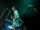 UCB Ska Fest '96 (Rancid, Ramones, Uptones, Dance Hall Crashers, Bad Manners)