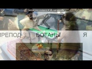 «Ваши приколы #1» под музыку Из мультфильма Алеша Попович - Песня лошади. Picrolla