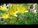 От весны до осени под музыку Kenny G - Forever In Love - красивый саксофон, красивая мелодия - легкое ненавязчивое слушание (E