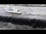 Землетрясение и цунами в Японии (2011) / Witness disaster in Japan
