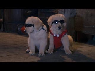 Снежная пятерка / Snow Buddies (2008) (приключения, семейный)