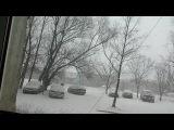 Первый снег в Калининграде 2014 год. Снег кружится летает летает