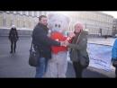 Сюрприз для девушки ,признание с мишкой Тедди,сюрприз для девушки в санкт-петербурге мишка тедди на дом подарки оригинально неож
