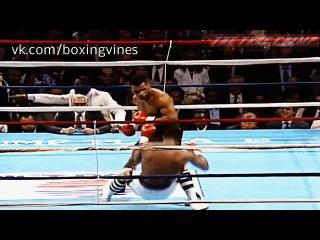 Tyson vine